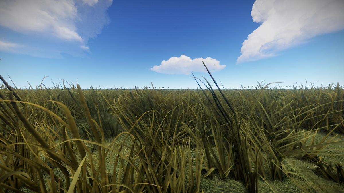 Rust Grass Background (2)
